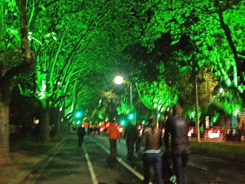 Walking to the Service. The trees were lit up by the street lights.
